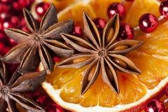 Free Christmas Time Stock Photos - 43735443