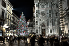 Christmas time in Firenze - Florence. The christmas tree in Piazza Duomo, Firenze (Toscana, Italy). Every year, the main christmas tree is set up next to the Royalty Free Stock Photo
