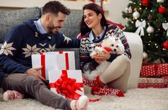 Christmas time- girl getting puppy for Christmas Royalty Free Stock Photos