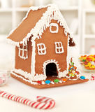 Christmas time in the kitchen Royalty Free Stock Photo