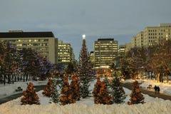 Christmas time. An outdoor christmas scene in edmonton, alberta Royalty Free Stock Photos