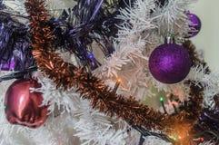 Christmas time Stock Image