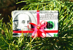 Christmas toy box with a red bow made of dollar bills on the branch of spruce Stock Images