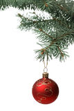 Christmas toy on a branch of a fur-tree Royalty Free Stock Images