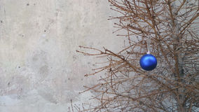 Christmas toy on a dry fir tree branch. Royalty Free Stock Images