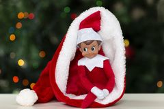 Christmas toy elf in santa hat with christmas tree background.  royalty free stock photography