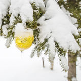 Christmas toy with icicle covered with snow hanging on spruce Royalty Free Stock Photos