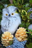 Christmas toy - owl. Small, cute toy owl. Fir cones and green branches. Winter has come - so soon the Christmas holidays Royalty Free Stock Photo