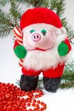 Christmas Toy Piglet Royalty Free Stock Images