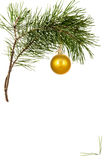 Christmas toy on pine branch. Object is on a white background Stock Photos