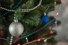 Christmas toy on the tree. Christmas toy on the branches of the Christmas tree royalty free stock photography
