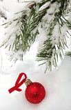 Christmas toy wiht a  branch of spruce Stock Photography