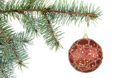 Christmas toys on branches of a fur-tree Stock Photos