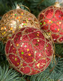 Christmas toys on branches of a fur-tree Stock Photography