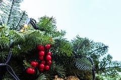 Christmas toys on the green tree with snow. Red balls with garland closeup. Christmas. Outside royalty free stock photo