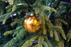 Christmas toys are not a branch of fir tree. Royalty Free Stock Photography
