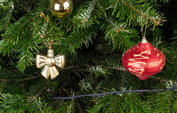 Christmas toys on pine tree branch. Stock Photo