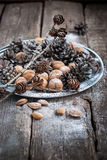 Christmas Tray with Pine cones and Nuts. Natural holiday decorat Royalty Free Stock Photo