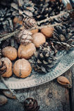 Christmas Tray with Pine cones and Walnuts, dark Royalty Free Stock Photos