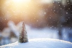 Christmas tre on snow. Winter holidays and Christmas background stock images