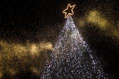 Free Christmas Tree Stock Photo - 10128220