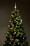 Christmas-tree Stock Photos