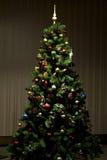 Christmas-tree Stock Photography