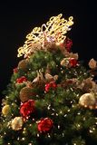 Christmas Tree. A Christmas Tree isolated on black background Royalty Free Stock Images