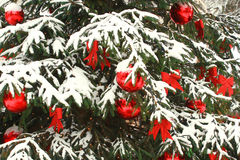 Christmas tree. Close-up with decorations and snow vector illustration