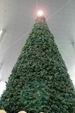 Christmas tree. With shining star on the top Royalty Free Stock Images