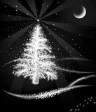 Christmas tree. Snow-covered Christmas tree at night in the woods Royalty Free Stock Images