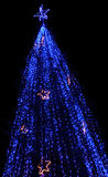 Christmas tree. Illuminated in blue with golden stars Stock Image