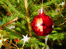 Christmas tree. Red sphere on a Christmas tree stock photos