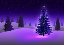 Free Christmas Tree Stock Image - 17181711