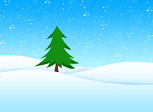Christmas tree. Tree in snow winter landscape Royalty Free Stock Images
