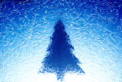 Christmas tree. In blue frost Royalty Free Stock Photography
