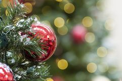 Christmas tree. Decoration for the coming holiday season royalty free stock photography