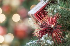 Christmas tree. Decoration for the coming holiday season royalty free stock images