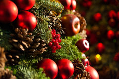 Free Christmas Tree Royalty Free Stock Photography - 27963567