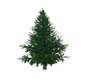 Christmas tree. Isolated on white background Royalty Free Illustration