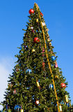 Christmas tree. With toys on a background of the blue sky Stock Photo