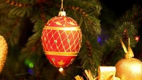 Christmas tree stock video footage