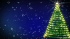 Christmas tree. Growing at snowfall night stock video footage