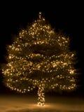 christmas tree Στοκ Εικόνα