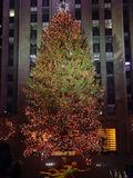 Christmas Tree. The Christmas Tree in New York City Stock Images