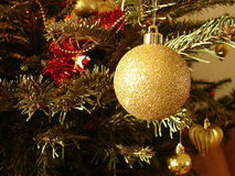 Christmas tree. And Gold sphere royalty free stock images