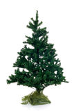 Christmas tree. Christmastree not decorated isolated on white background Royalty Free Stock Photography