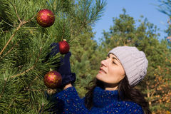 Christmas tree. Woman decocating the christmas tree Royalty Free Stock Image