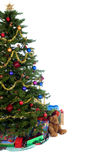 Christmas Tree. An isolated Christmas tree ready for Santa Stock Photo