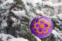 Christmas-tree. Violet christmas glass ball hanging on the tree in snow Stock Images